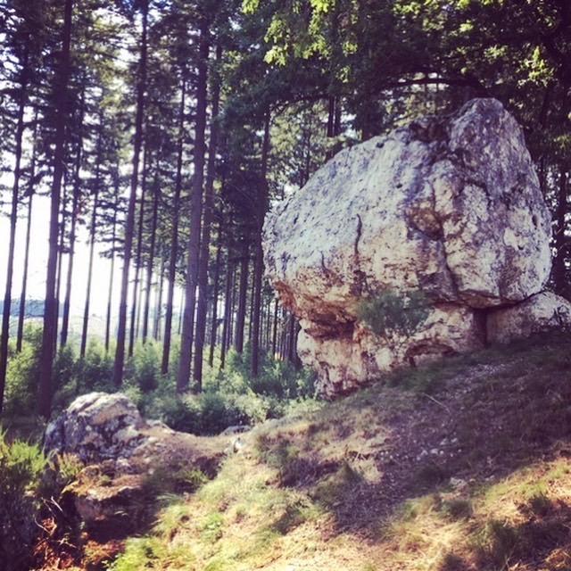 Les cailloux de Mousny en Ardennes - Georges Rodenbach G%C3%A9obio-Les-Blancs-Cailloux-de-Mousny-1-Juillet-2019-M%C3%A9lina-Maillez